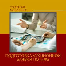 Подготовка аукционной заявки по 44ФЗ